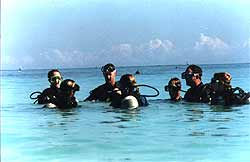 dive instruction certification playa del carmen mexico